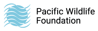 Pacific WildLife Foundation